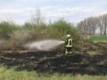 Flächenbrand (2)
