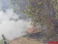 Flächenbrand (4)