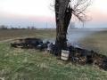 brennt Baum (15)