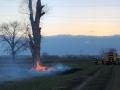 brennt Baum (19)
