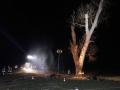 brennt Baum (23)