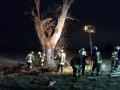 brennt Baum (6)