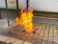brennt Mülltonne (1)